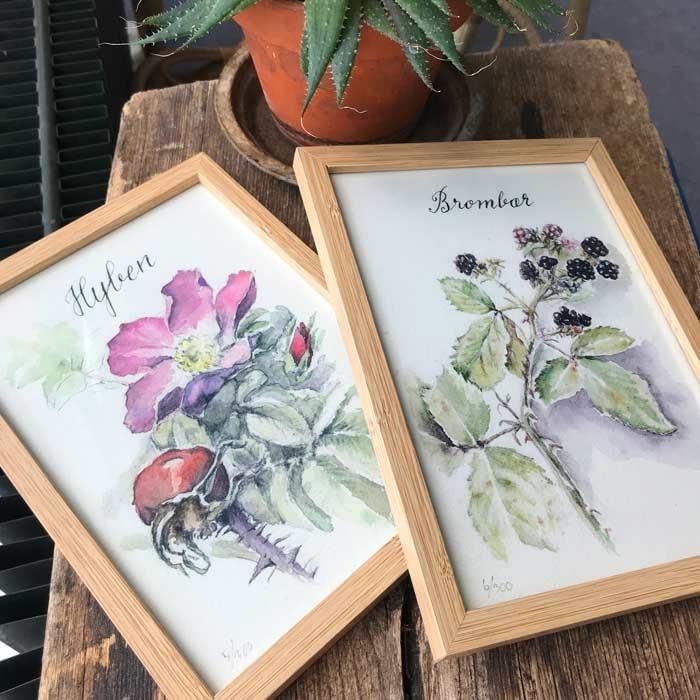 Spiselige planter kunsttryk