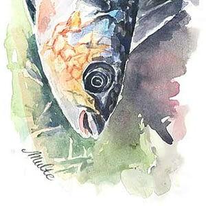 Kunsttryk af fisk